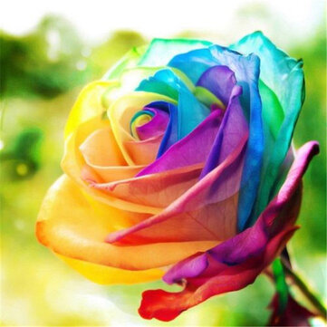 Egrow 200Pcs Rainbow Rose Seeds Rare